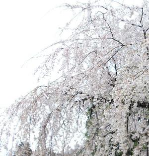2010apr03_2