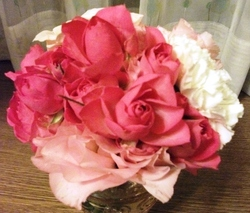 Flower_101127b