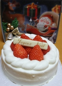 Xmas_cake