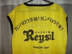 Raysol723b