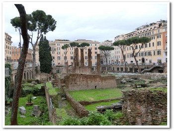 Roma50