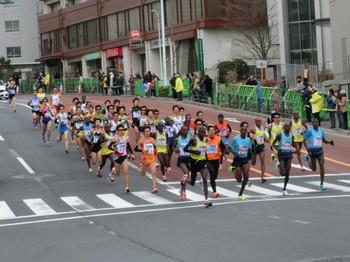 Tokyomarathon2014_a